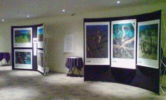 The photo shows a small part of the exhibition which was recently shown at the Auckland Museum