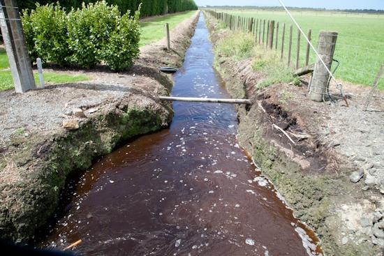 Omaha Flats drainage to the harbour - Ian Macdonald