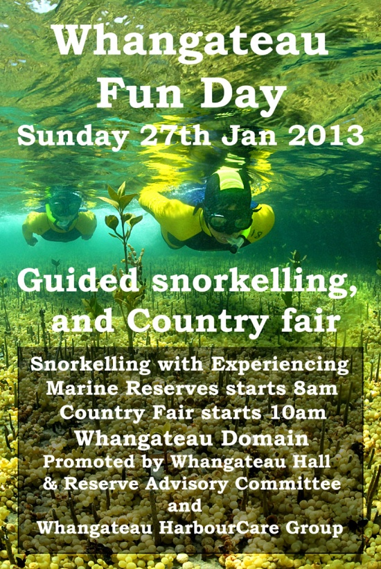 Whangateau Fun Day