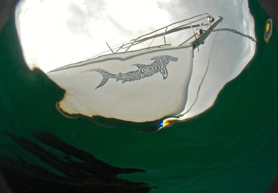 Lily's yacht Amadis has a distinctive hammerhead shark drawing on the bow.