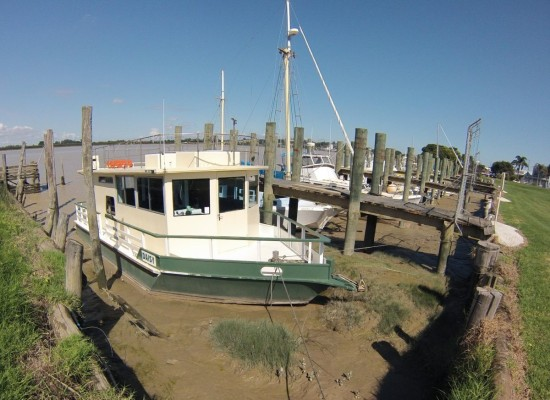 The small marina at Dargaville cradles the boats in a wallow of mud from mid-tide downwards.  Who needs (or can afford) maintenance dredging?  The current situation obviously works!