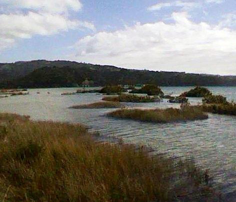 Esplanade reserve