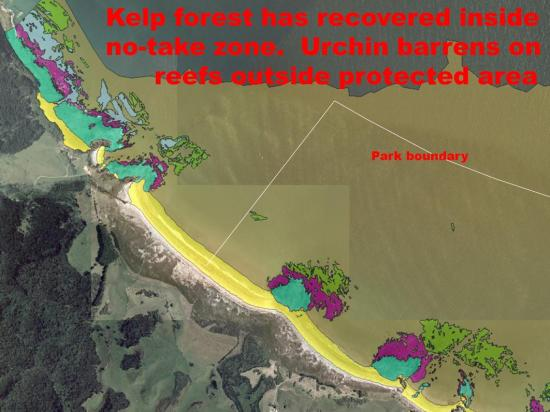 Why Do We Need No-take Zones for Marine Spatial Plan Dr Roger Grace (37)