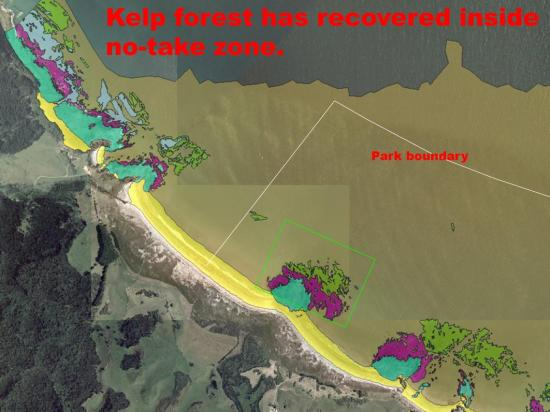 Why Do We Need No-take Zones for Marine Spatial Plan Dr Roger Grace (38)