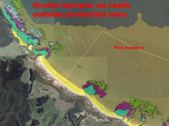 Why Do We Need No-take Zones for Marine Spatial Plan Dr Roger Grace (41)