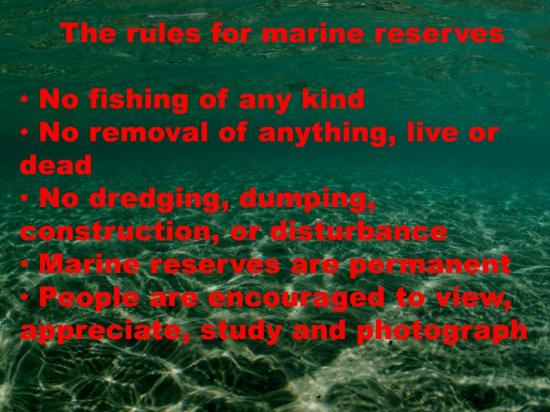 Why Do We Need No-take Zones for Marine Spatial Plan Dr Roger Grace (55)