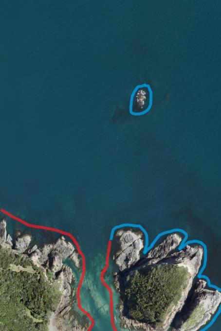 Flagging kelp_Feb-15pdf 27