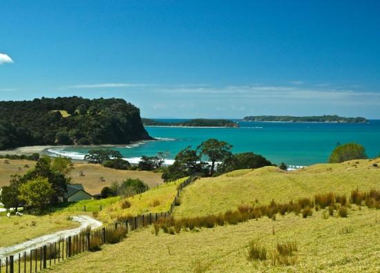 A marine reserve for Te Muri?