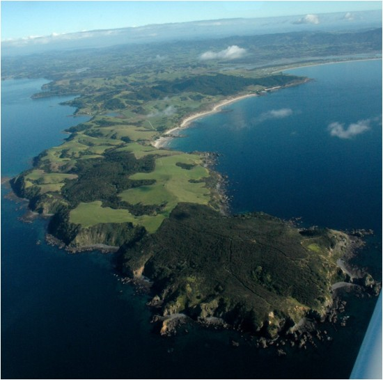 We have made good progress with biodiversity recovery on the land, eg. Regional Parks and Tiritiri
